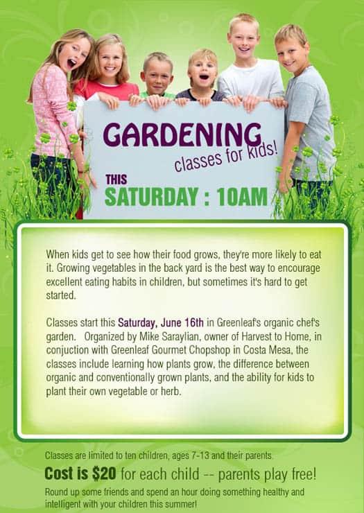 Gardening Classes For Kids Popsicle Blog