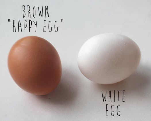 How To Dye Brown Easter Eggs Popsicle Blog