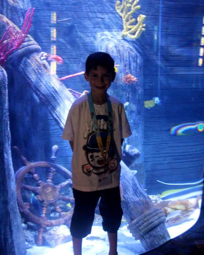 sea-life-legoland-fish