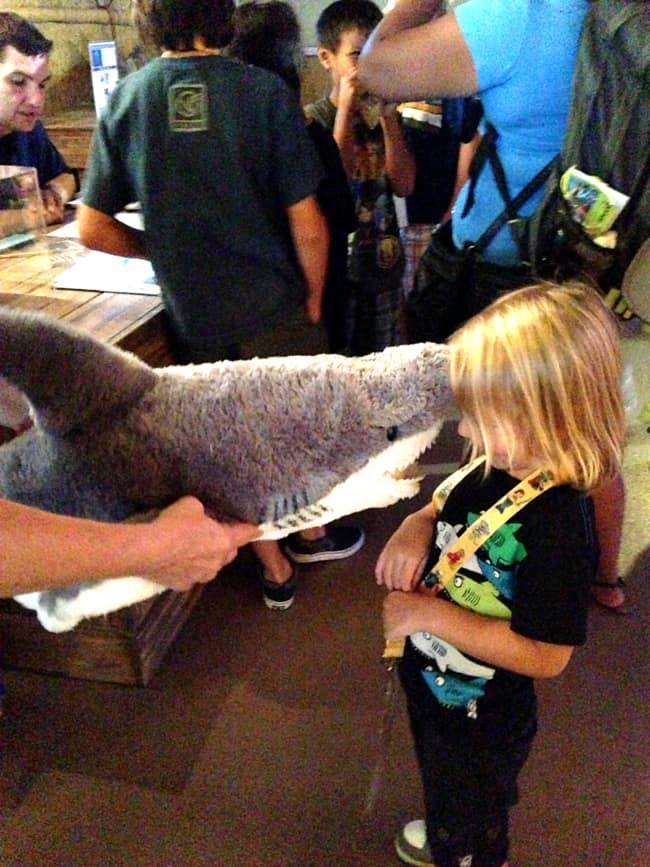 sea-life-aquarium-shark-toy