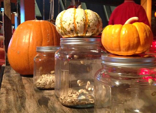 spooky-science-pumpkins-discoverycube