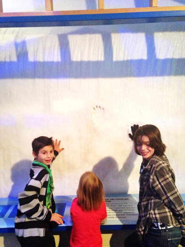 ice-wall-discovery-science-center