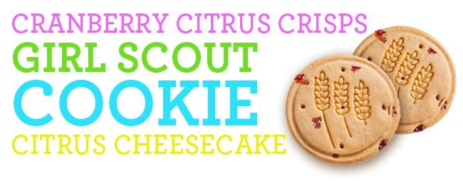 citrus-cheesecake-cookie-crust-recipe
