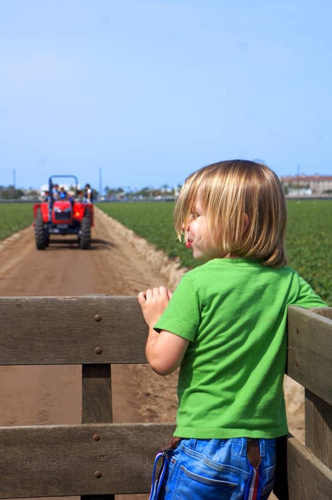oxnard-farm