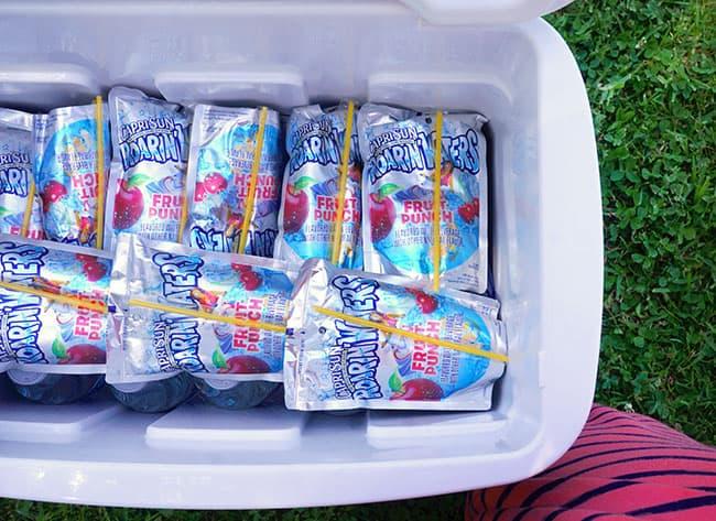 capri-sun-ice-pouches