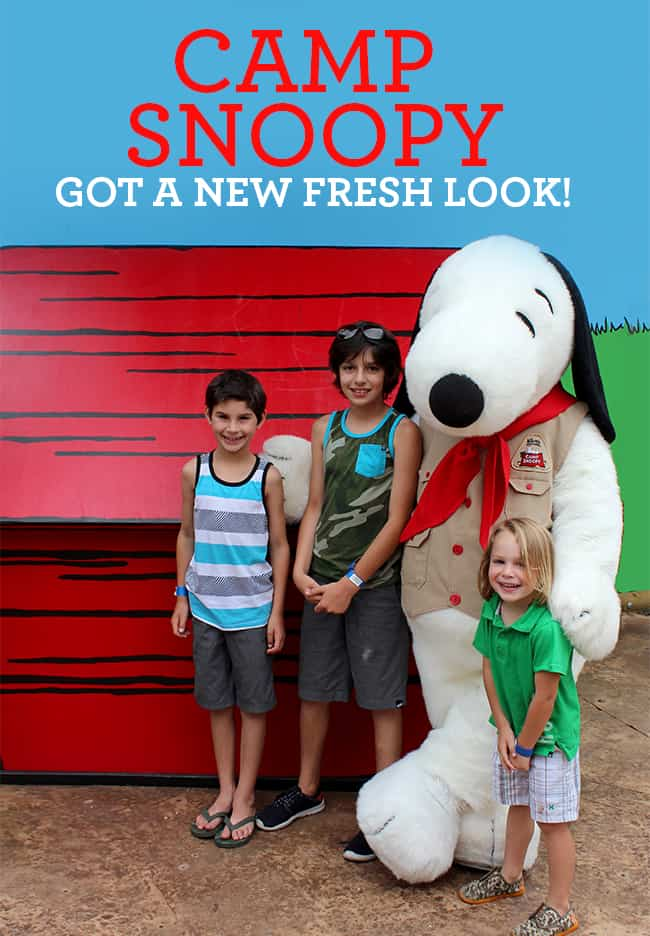 camp-snoopy-new-look