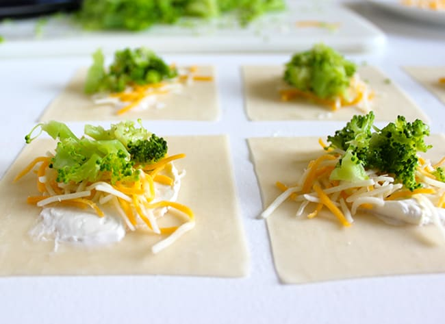 Broccoli Cream Cheese Cheddar Wontons