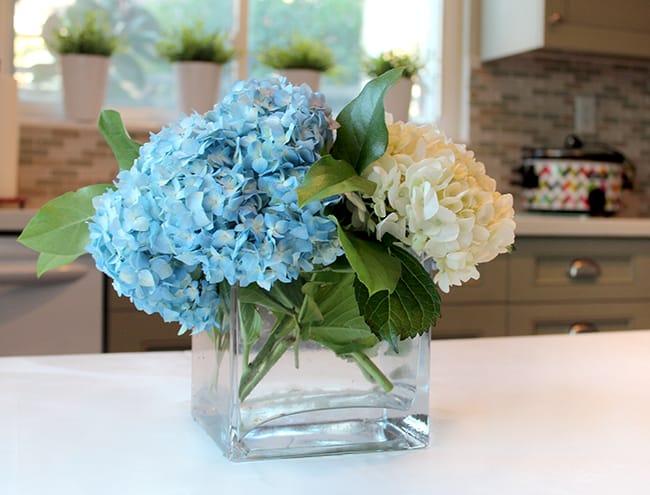 fresh-flowers-hydrangeas