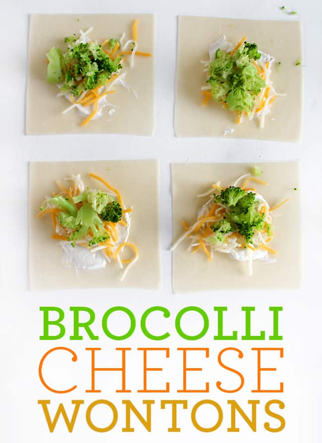 How to Make Broccoli Cheese Wontons