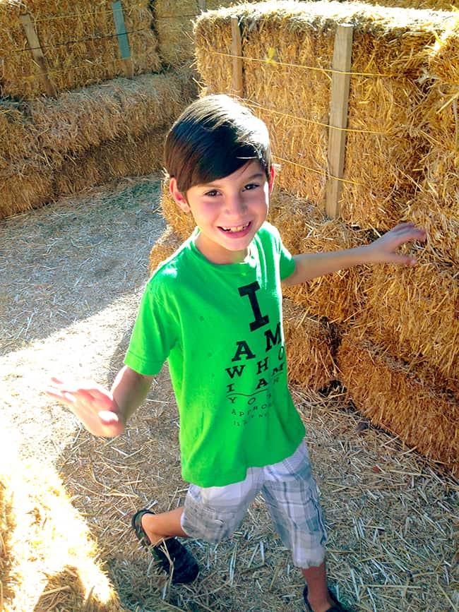 irvine-park-railroad-hay-maze