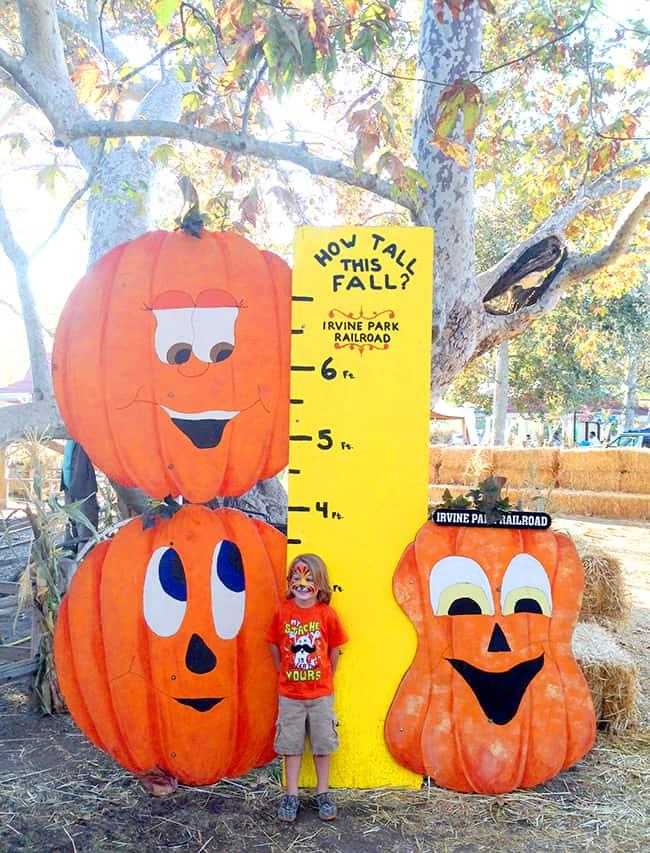 irvine-park-railroad-pumpkin-patch-growth-chart