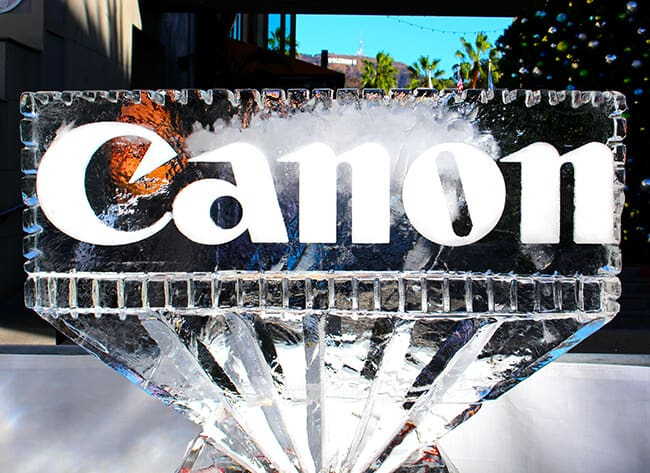 Canon Ice Sculpture