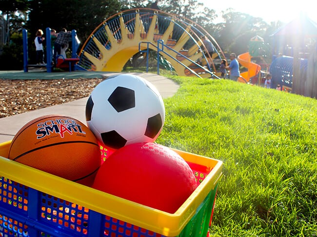 school-specialty-sports-ball-kit