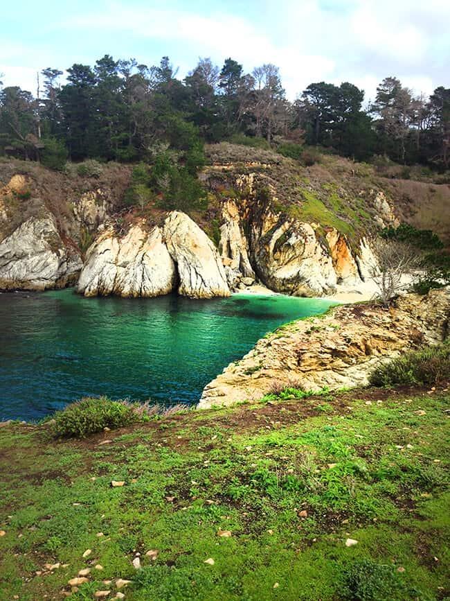 Carmel By The Sea Point Lobos Bird Island