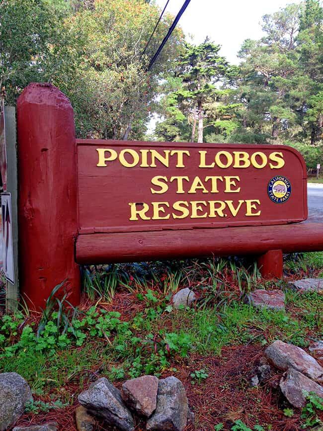 Point Lobos State Park Beach
