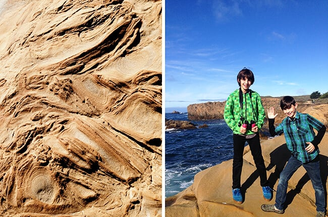 Point Lobos State Park Hike