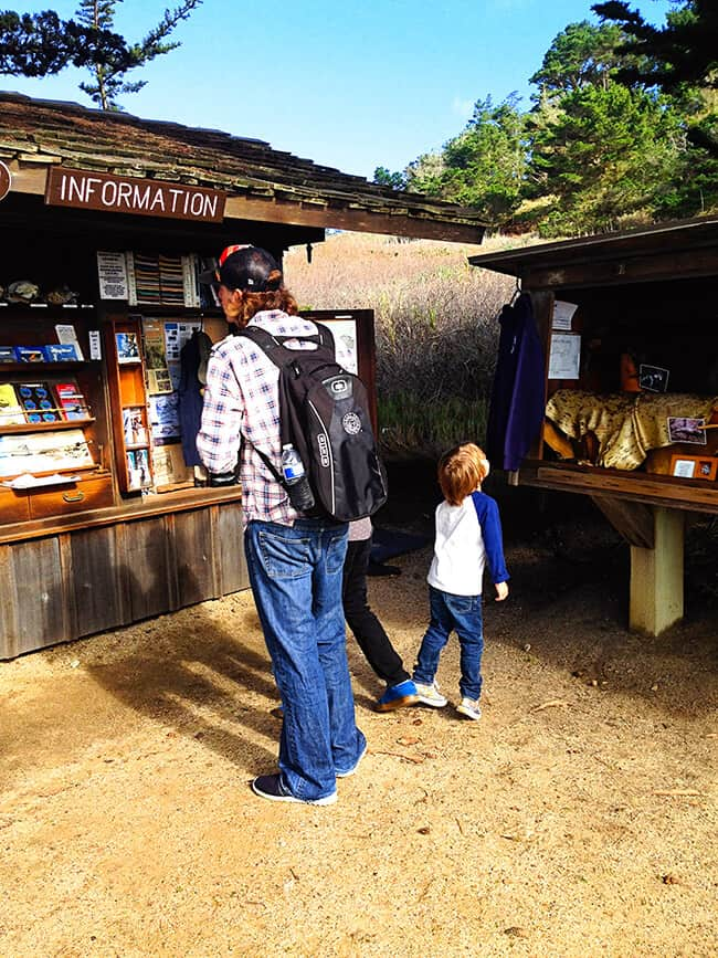 Point Lobos State Park Information