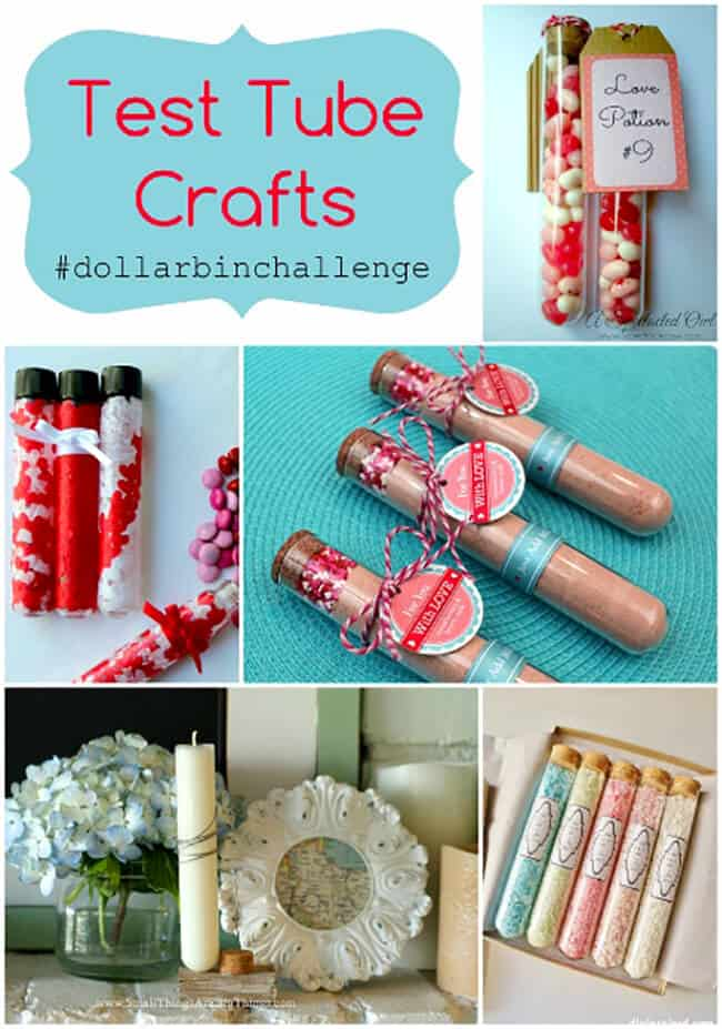 Test Tube Craft Ideas-Dollar Bin Challenge