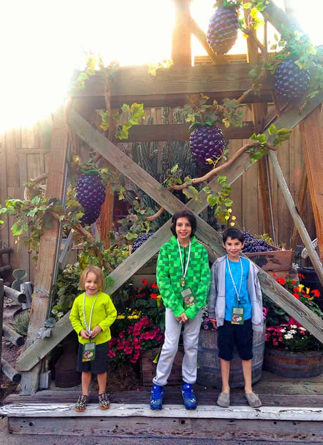 Knott's Berry Bloom_Things to do in Orange County