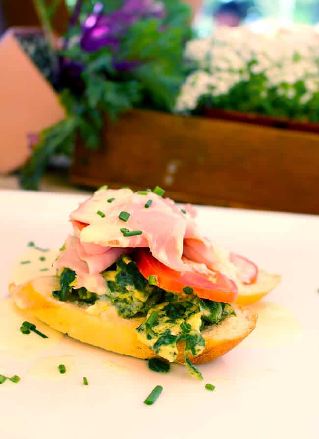 Green Eggs and Ham by Zovs Bistro OC