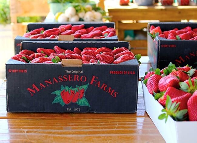 OC Manassero Farm Stand Strawberries