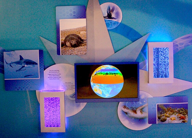 The Discovery Cube Sealife Exhibit