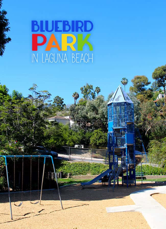 Bluebird Park in Laguna Beach OC