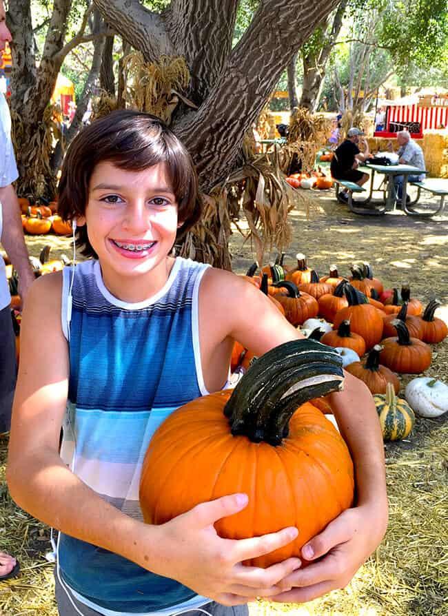 Best Pumpkins in Orange County