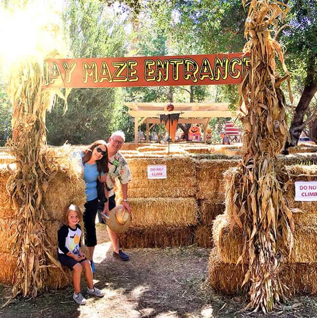 Orange County Hay Maze