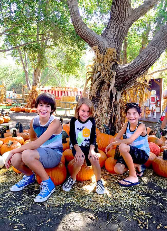 Orange County Pumpkin patches