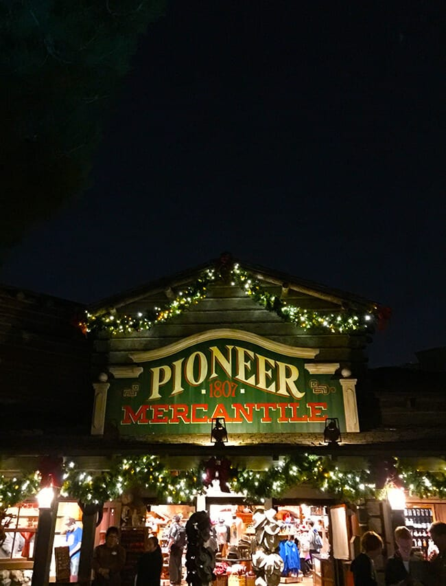 Disneyland Christmas Mercantile at Night