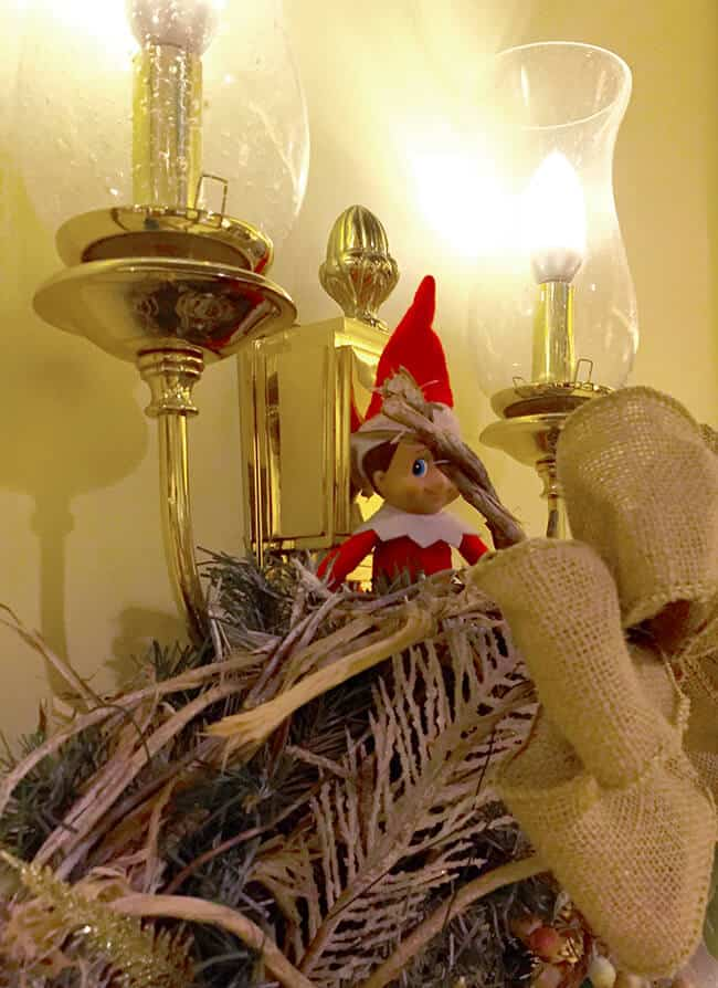 Elf at the Four Seasons
