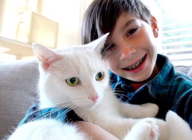 Boy Hugging a Kitty
