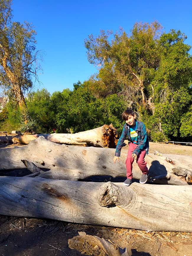 Exploring Santiago Creek Park in Orange County