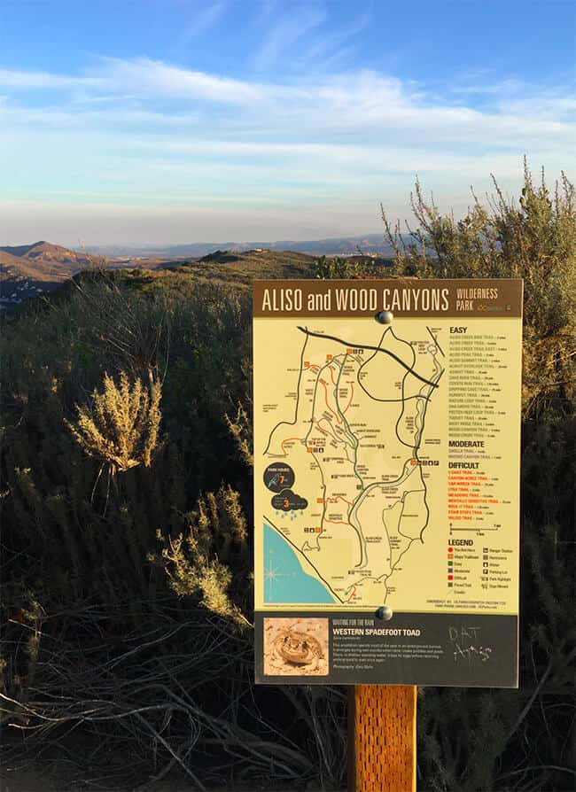 Hiking in Aliso Viejo