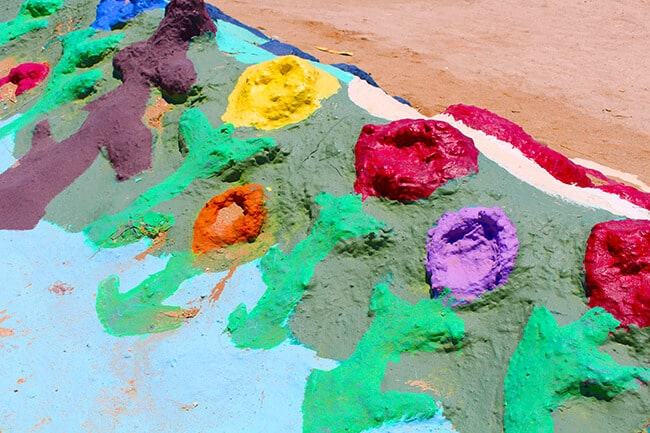 Salvation Mountain Flowers