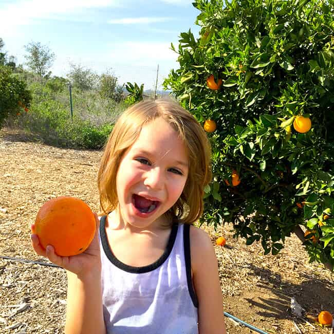 Vann Parkin in an Orange Grove