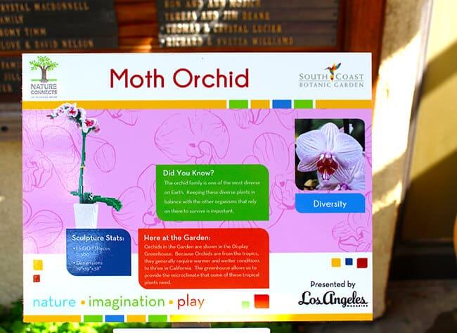 Moth Orchid Lego