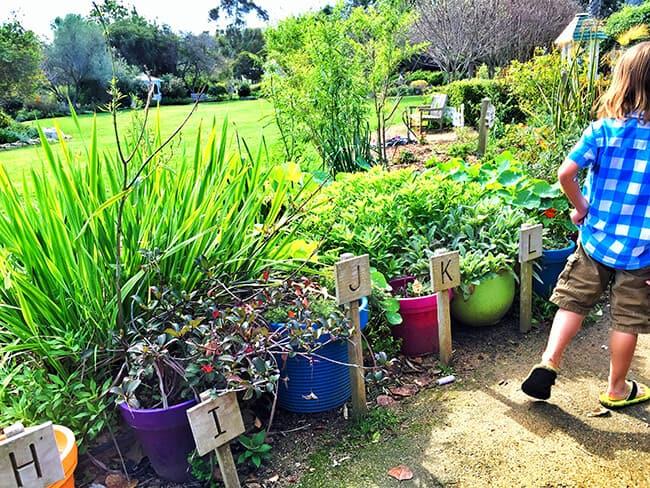 South Coast Botanic Garden Alphabet