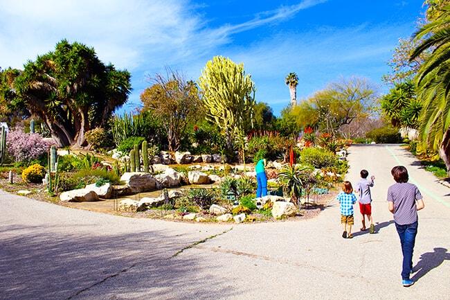 South Coast Botanic Garden in Palos Verdes