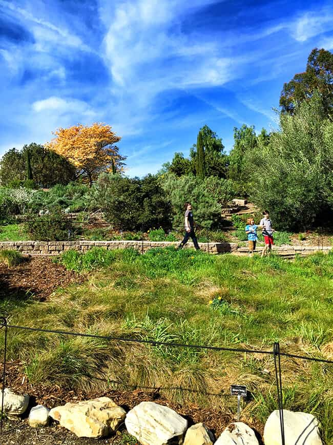 Walking in South Coast Botanic Garden