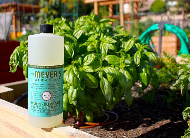 Meyer's Clean Day Basil Cleaner