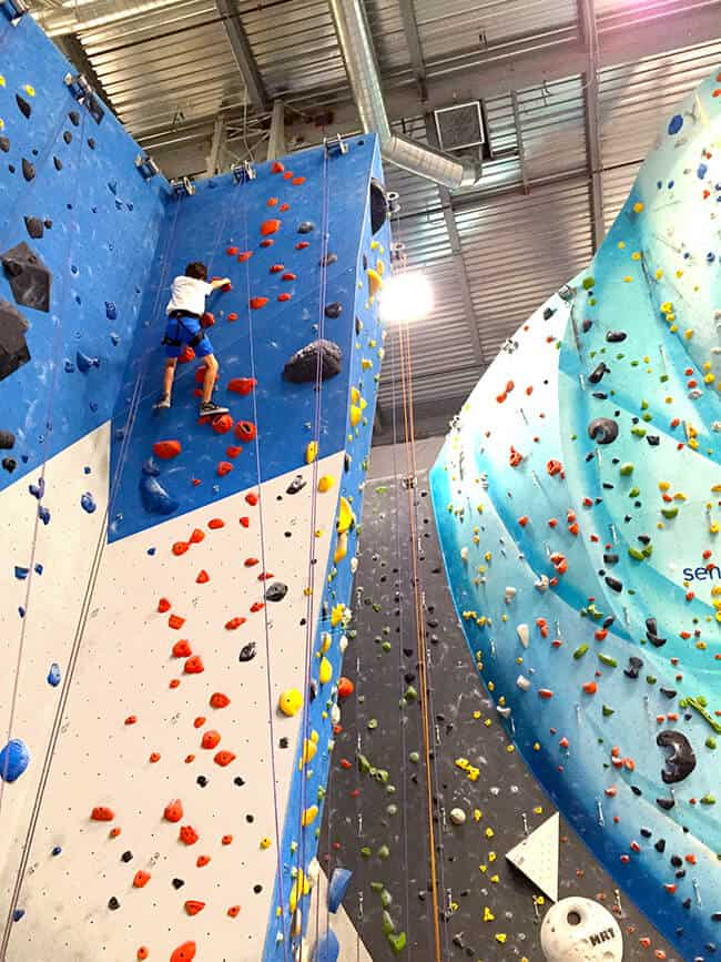 Fun Activities for Families in Orange County