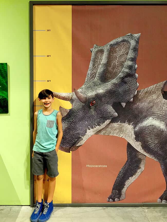Discovery Cube Dinosaur Exhibit Review