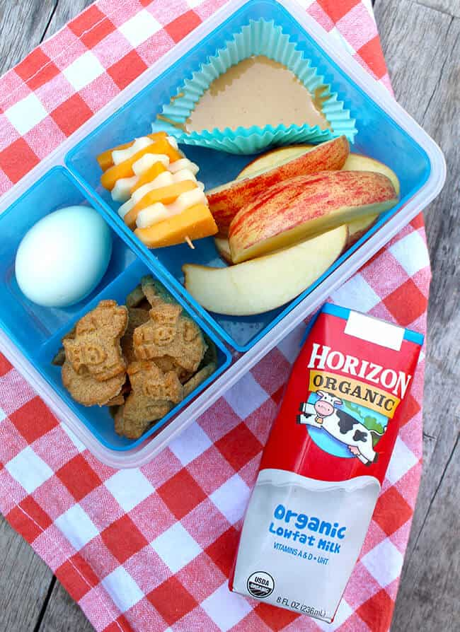 Fun-ideas-for-school-lunches