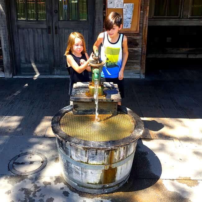 Knott's Water Pump