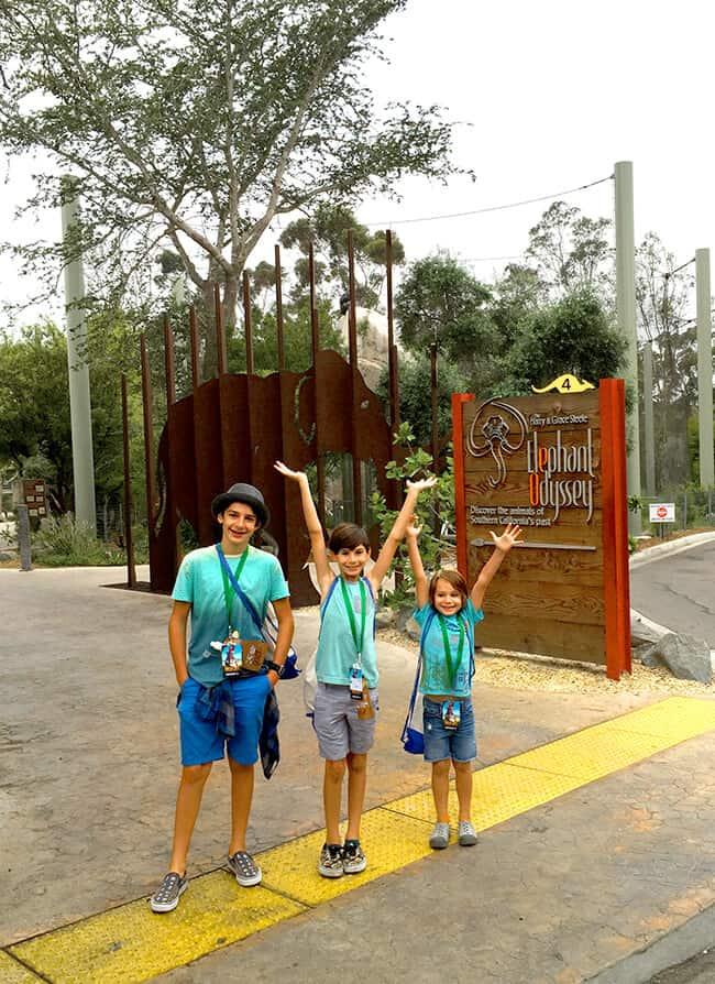 elephant_odyssey_san_diego_zoo