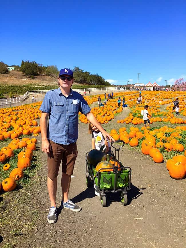 cal-poly-pomona-pumpkin-patch-tips