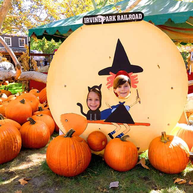Irvine Park Railroad Pumpkin Patch Cute Photo Backdrops