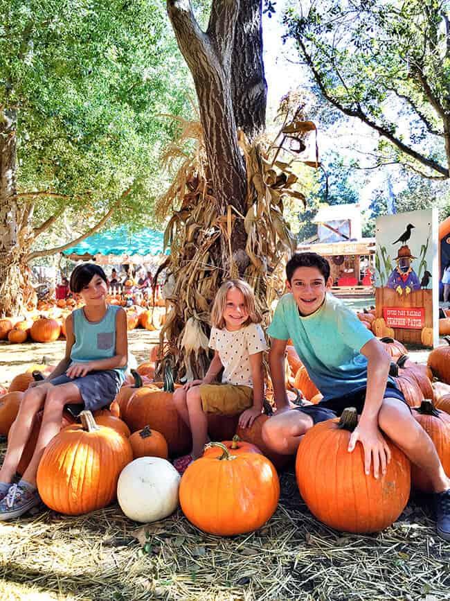 Irvine Park Railroad Pumpkin Patch